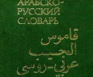 قاموس الجيب عربى روسى PDF